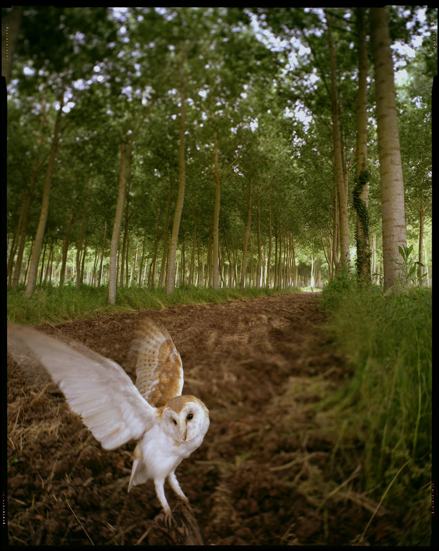 Vincent Monthiers — Photographe Fables du Médoc
